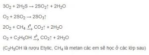 hoa-hoc-2